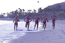 Billy Santoro, Braden Charron, Landon Conrad, Mike De Marko, Topher Di Maggio in Gaywatch Part 4 by