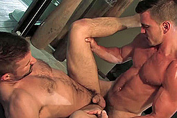 Kyle King, Paddy O'Brian in Paddy O'Brian Tops Kyle King by Hot House